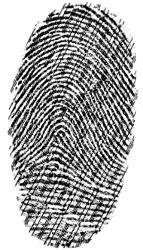 gesicherte Fingerabdruck mit EVISCAN