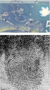 Fingerabdrücke auf Banknote