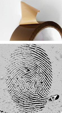 fingerprint on adhesive tape (dry)