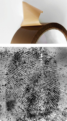 fingerprint on adhesive tape (sticky)