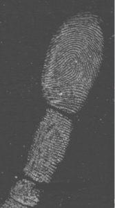 latenter Fingerabdruck gesicht mit UV/VIS Scankit