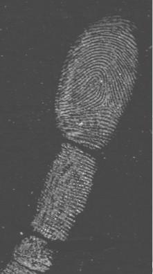 latenter Fingerabdruck gesichert mir UV/VIS ScanKit