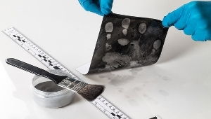 forensic science, fingerprints