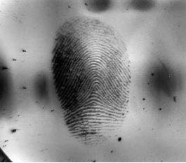 fingerprint on a mirror