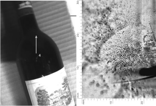 fingerprint on wine bottle