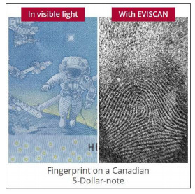 latent fingerprint on canadian five dollar note detected with eviscan